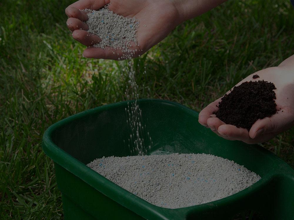 Tampa Bay Fertilization
