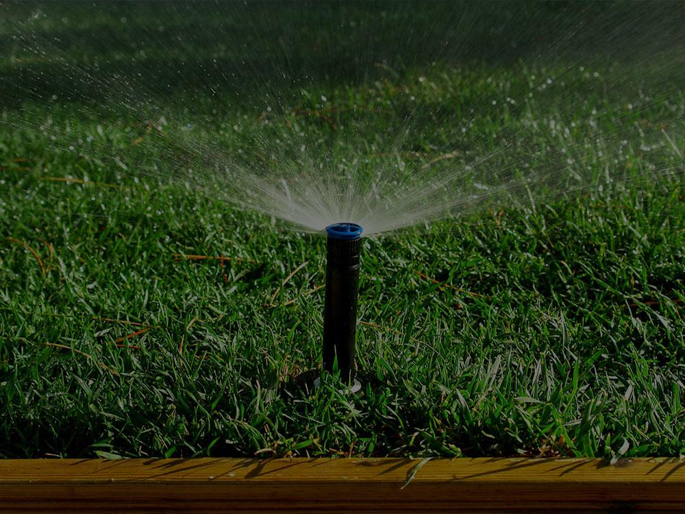 Tampa Bay Irrigation
