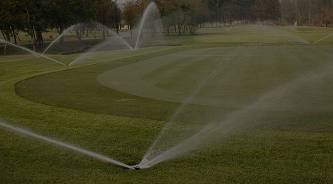 Tampa Bay Irrigation