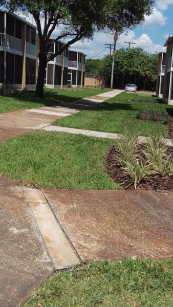 Tampa Bay South Shore Landscape and Lawn